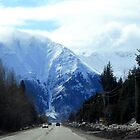 Old Seward Highway by John Michael Sudol