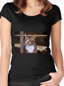 Wild Kitty ~ Impressions Women's Fitted Scoop T-Shirt