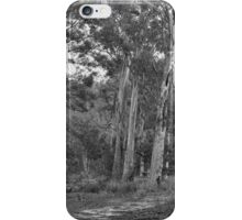 Stand Out - Gum Leaves - Tasmania iPhone Case/Skin