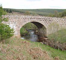 Bridge of Dye by gayler