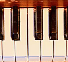 Piano Octave by Bo Insogna