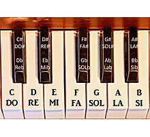Piano Octave DO RE MI Photographic Print