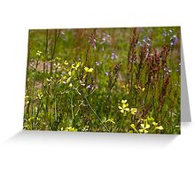 Blooms In The Meadow Greeting Card