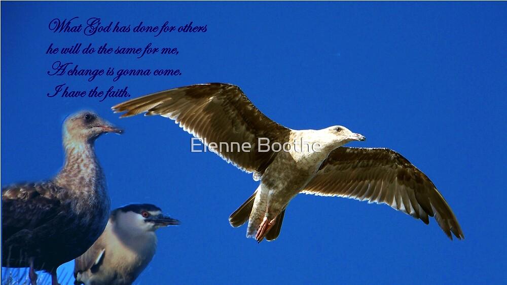 Have Faith by Elenne Boothe