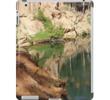 Tranquil River iPad Case/Skin