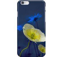 3724 iPhone Case/Skin