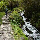 The Inka Trail by jeffro796