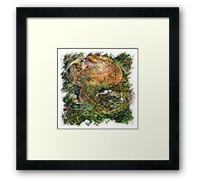 The Atlas Of Dreams - Color Plate 147 Framed Print