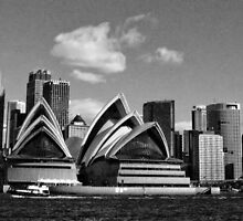 Sydney by Kelly McGill