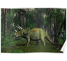 Triceratops Poster