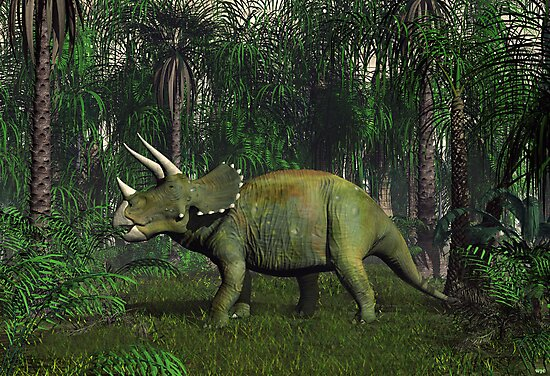 Triceratops by Walter Colvin