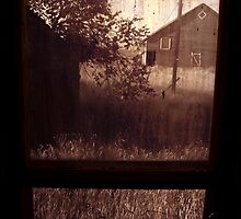 Windowpane by Larry  Stewart