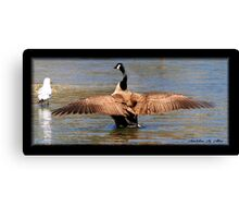 OUT-STRETCHED WINGS Canvas Print