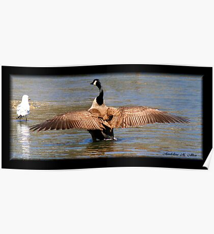 OUT-STRETCHED WINGS Poster
