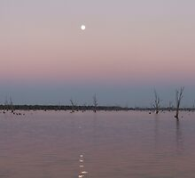 lake mulwala  by belinda thompson