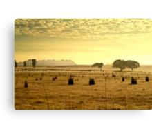 Dry Pasture,Mt Duneed Canvas Print