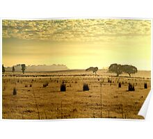 Dry Pasture,Mt Duneed Poster