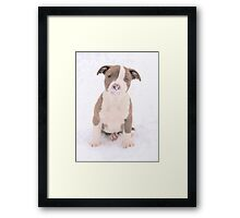 What Is On My Nose Mom? Framed Print