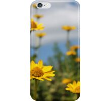 Field of Bright Yellow Flowers iPhone Case/Skin