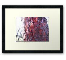 Red beads... Framed Print