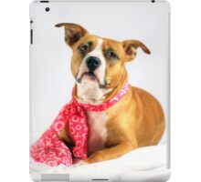 Fifty Shades of Pink iPad Case/Skin