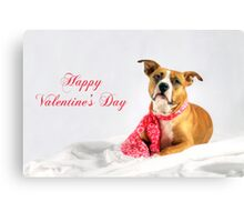 Fifty Shades of Pink - Happy Valentine's Day Canvas Print