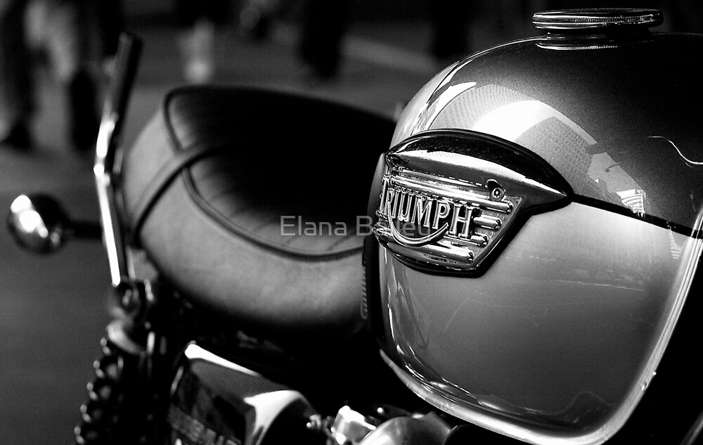 Triumph Motorbike by Elana Bailey