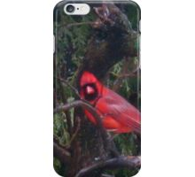 Through all weathers iPhone Case/Skin