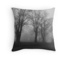 REDREAMING MARCHING IN THE MIST Throw Pillow