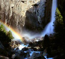 Yosemite Falls by Varinia   - Globalphotos