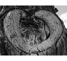 Heart Shaped Wound Photographic Print