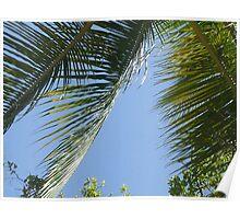 Caribbean Skies Poster