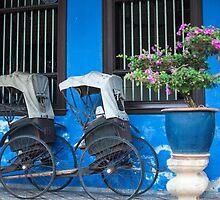 Cheong Fatt Tze Mansion - Penang by Maria  Varlet