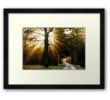 In Search of the Light Framed Print