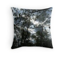 52 Throw Pillow