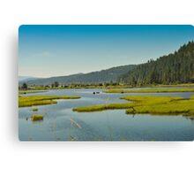 Idaho, Lake Pend Orielle, Back Road To Montana Canvas Print