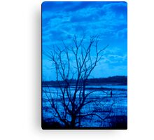 Tungsten Lake Canvas Print