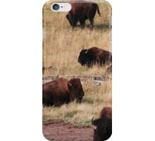 Bisons of Yellowstone iPhone Case/Skin