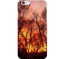 Winter Sunset 1/2/2015 iPhone Case/Skin