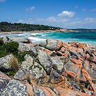 Bay of Fires - Tasmania by Paul Campbell  Photography