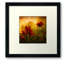 Red for Love Framed Print