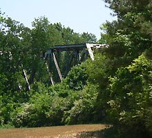 Railroad Bridge by Sheila Simpson