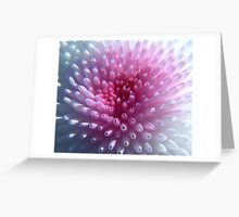 pom Greeting Card