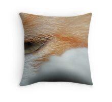 Oscar Eye Throw Pillow