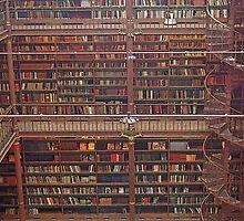 Amsterdam - Rijksmuseum library by Maureen Keogh