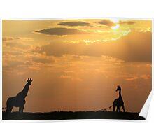 Giraffe Sunset - African Wildlife - Silhouette Pair Poster