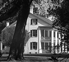 Magnolia Ridge by Bonnie T.  Barry