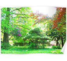 Surrounding the bonsai Poster