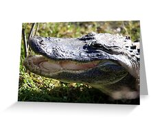 Wild Gator Greeting Card