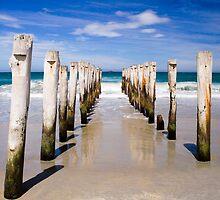 Straight down the middle at St Clair Beach, Dunedin by Elana Bailey